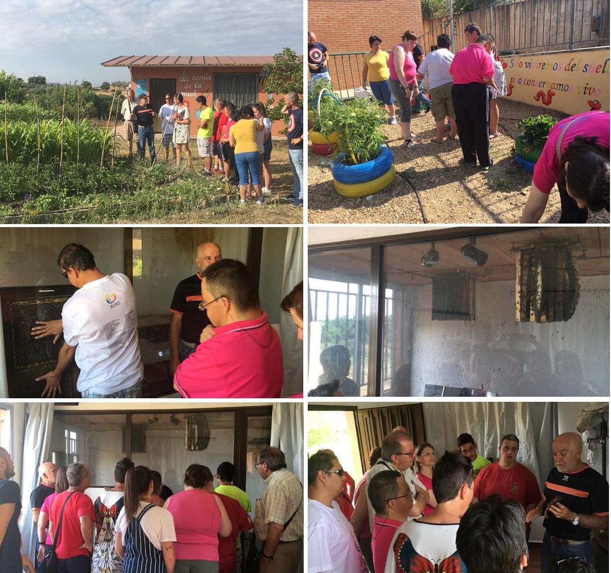 Visita a La Casita de la Miel de Cañamero julio 2019