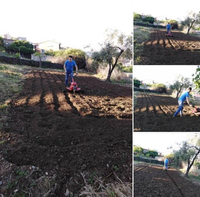 Preparado el terreno para sembrar (2020)